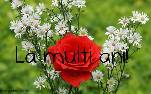 Felicitari de La Multi Ani - De ziua ta - mesajedelamultiani.info